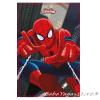 Детско одеяло СПАЙДЪРМЕН Spiderman fleece blanket SKYSCRAPER - 7209