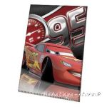 Kids fleece blanket Cars2, 7225